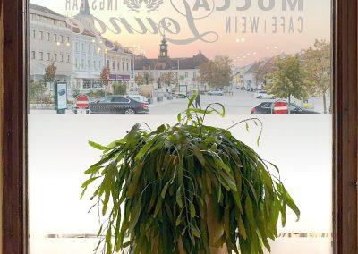 Restaurant Kaffee Hollabrunn 004
